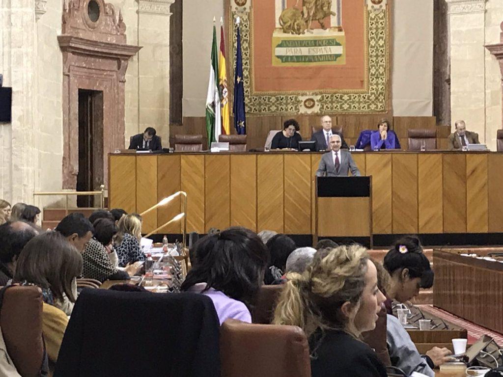 Un momento del debate de presentación en el Parlamento andaluz de la Ley del Cine de Andalucía