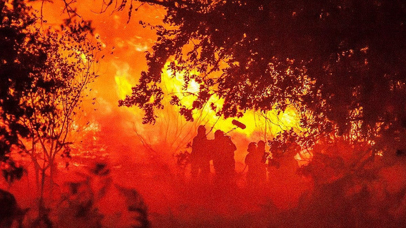 Fotograma de 'O que arde', de Oliver Laxe.